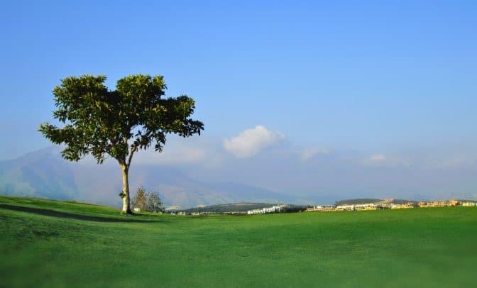 doña julia golf club golf course