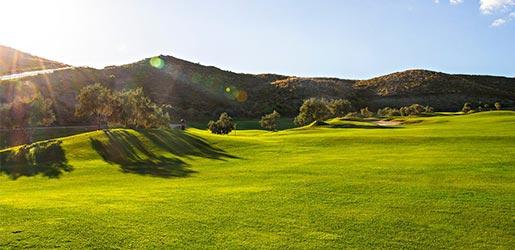 alferini golf club golf course